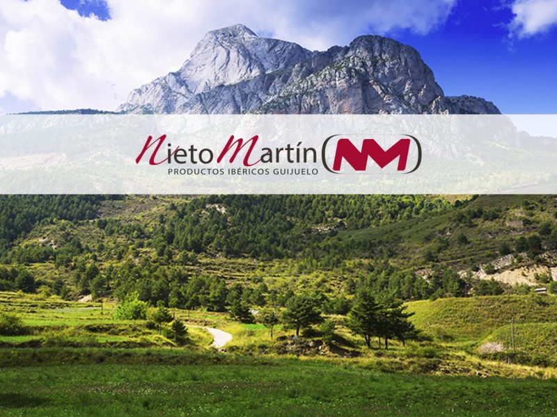Nieto Martin - Post 04-07-19 BLOG