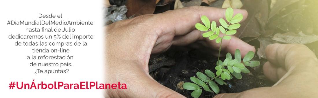 Nieto Martín reforestación